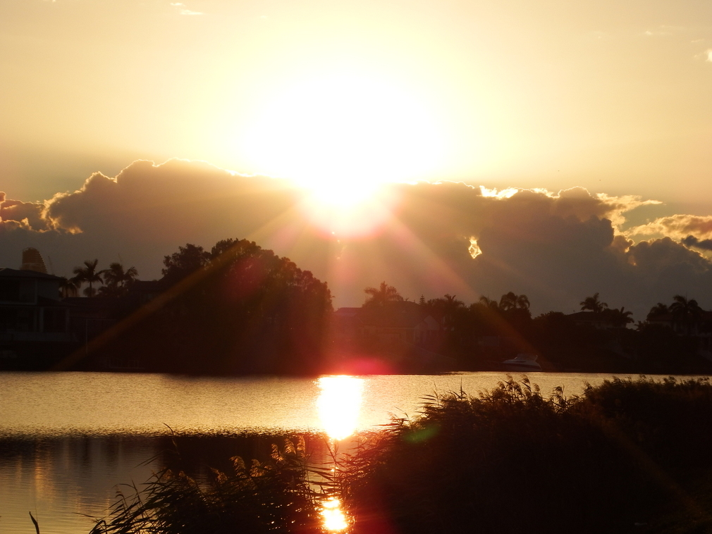 Robina Lakes early sunrise ... the children of this world ... sparkle like gems lit from within